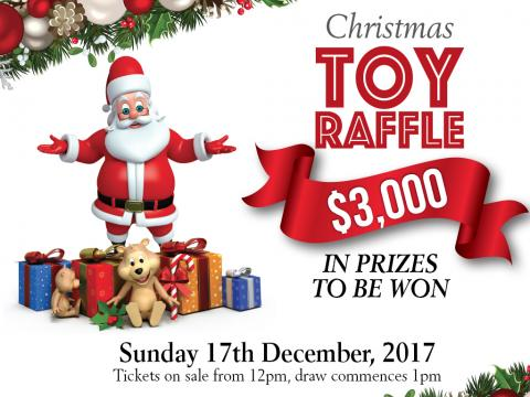 Christmas Toy Raffle
