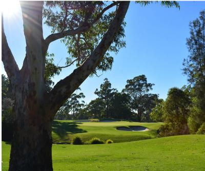 Ryde Parramatta Golf Course 10th Green